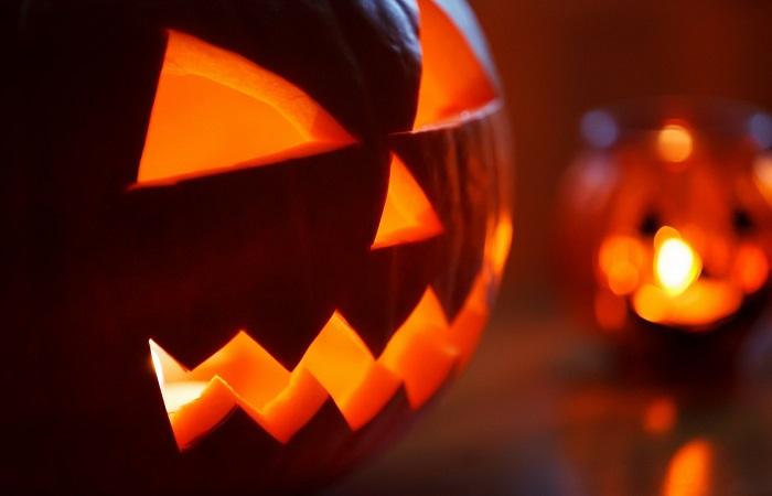 Zucca Di Halloween Quando Seminare.E Tempo Di Zucche Fuori Di Verde