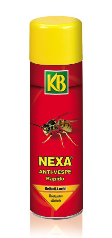 eliminare le vespe