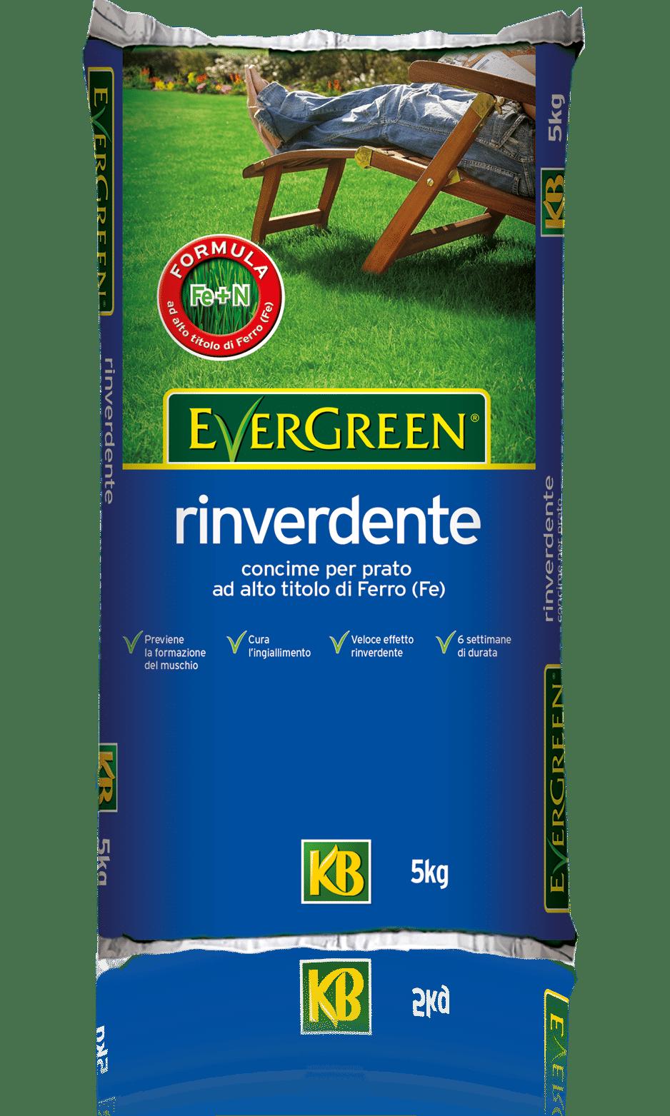 Evergreen_rinverdente
