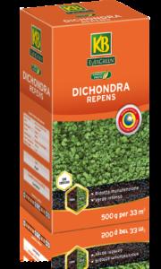 SEM26_Dichondra_Repens