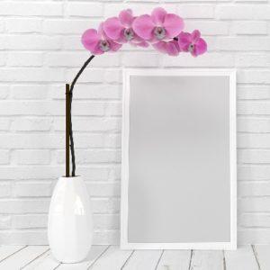 Fiori Delle Donne - Orchidea