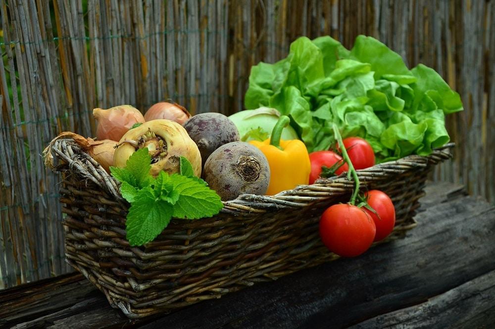 ortaggi da coltivare in primavera