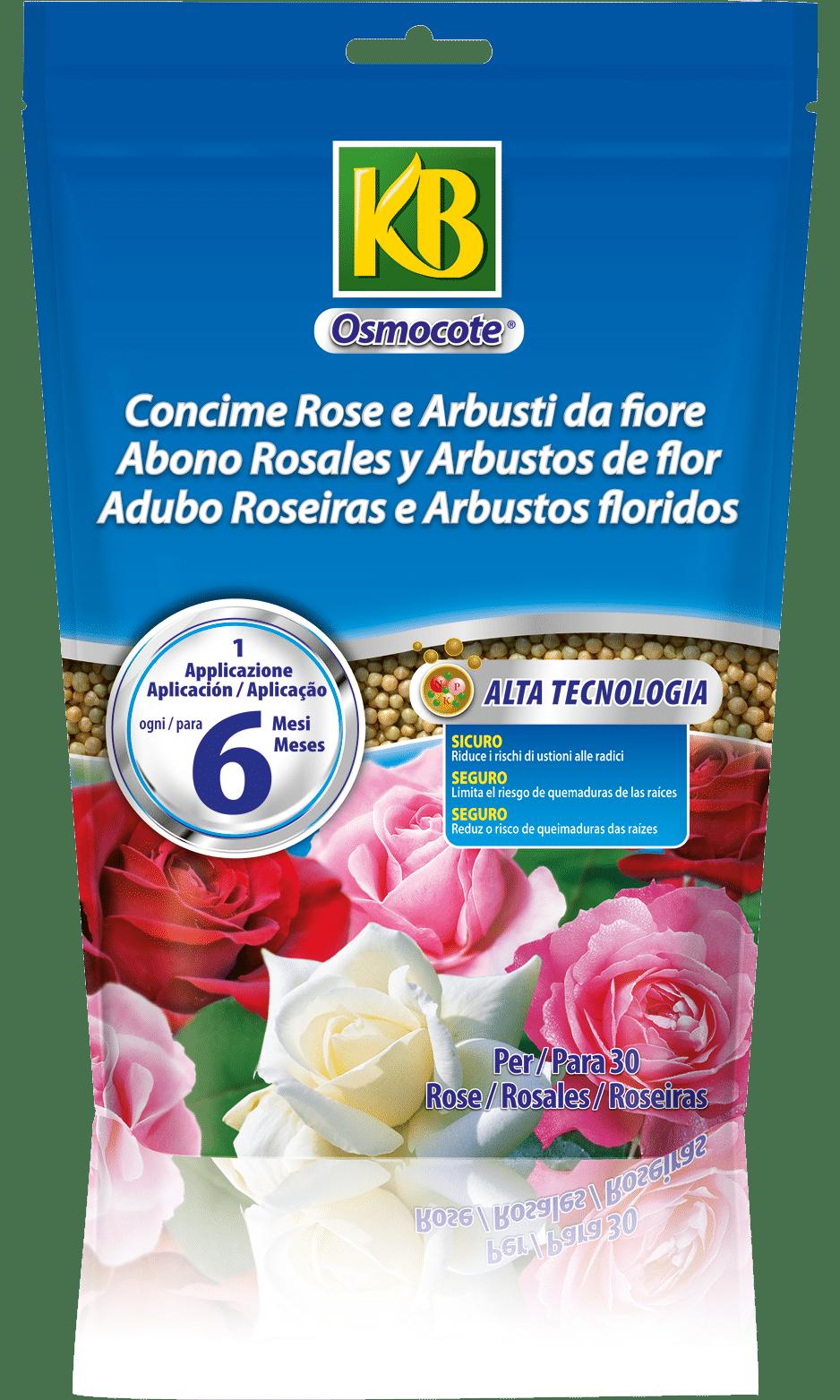 6221_Osmocote_Rose_Arbusti