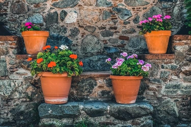 Scegliere I Vasi Per Il Terrazzo